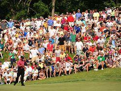 Tiger-Woods-Crowd